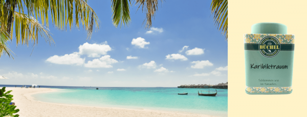 media/image/Karibik-Dose-min.png